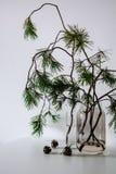 Skandinavischer Weihnachtsdekor Kieferzweige und -kegel stockfoto