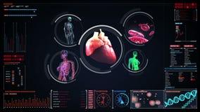 Skanerowania naczynie krwionośne, limfatyczny, kierowy, krążeniowy system w cyfrowym pokazie, Błękitny Radiologiczny widok zbiory wideo