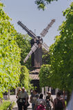 Skansen Park Windmill Stockholm Sweden Stock Photos