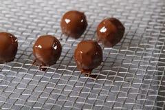 Skapa br?nda mandlar och tryfflar med mj?lka choklad royaltyfri bild