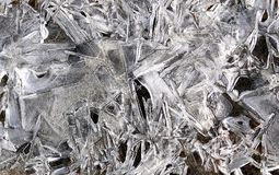 Skapelse av natur fryst is i en pöl av vatten Arkivbilder