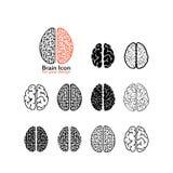 Skapelse och idésymboler och beståndsdelar Uppsättning av mänskliga hjärnor Arkivbilder