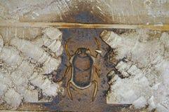 Skarabeuszu hieroglif przy Karnak świątynią Luxor, Egipt - Obraz Stock