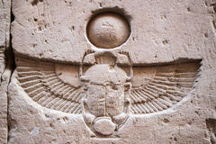 Skarabeuszu hierogliph zdjęcia stock