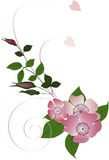 skarbikowana brier dekoracja ilustracja wektor