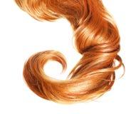 Skarbikowany Czerwony włosy odizolowywający na białym tle Obrazy Royalty Free