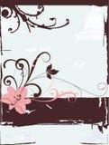 skarbikowany elegancki wektor Fotografia Royalty Free