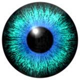 Skarp attraktiv djup ögontextur 3D 19 Royaltyfri Fotografi