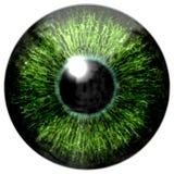 Skarp attraktiv djup ögontextur 3D 17 Fotografering för Bildbyråer