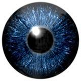 Skarp attraktiv djup ögontextur 3D 11 Arkivbild