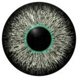 Skarp attraktiv djup ögontextur 3D 15 Arkivfoton