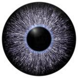 Skarp attraktiv djup ögontextur 3D 7 Arkivfoton