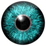 Skarp attraktiv djup ögontextur 3D Fotografering för Bildbyråer