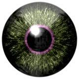 Skarp attraktiv djup ögontextur 3D 14 Arkivfoton