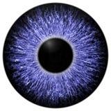 Skarp attraktiv djup ögontextur 3D 12 Fotografering för Bildbyråer