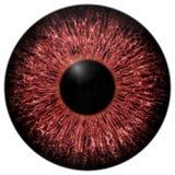 Skarp attraktiv djup ögontextur 3D 10 Royaltyfri Bild