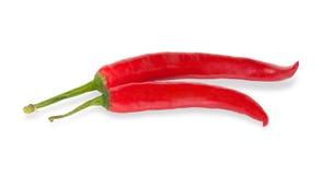 Skarp röd peppe som två isoleras Royaltyfri Foto