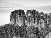 Skarpa sandstenklippor av Schrammsteine vaggar ovanför den djupa dalen Populär klättraresemesterort Arkivbilder
