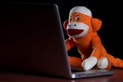 Skarpety małpa używać komputer Fotografia Royalty Free