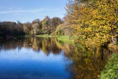 Skaryszewski Park in Warsaw Stock Photography