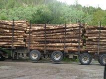 skatalogowania ciężarówkę. Zdjęcie Royalty Free