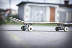 Skate foto de stock
