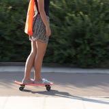 skateboard πλέγματος κοριτσιών διάνυσμα Στοκ Εικόνα