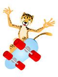 Skateboard Cheetah Stock Images