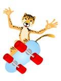 Skateboard Cheetah. Cute Safari Leopard Cheetah skateboarding; Vector Illustration Stock Images