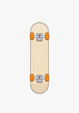 Skateboard. Illustration of wooden skate board Stock Image