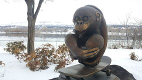 Skateboard monkey sculpture. Monkey on skateboard Stock Image