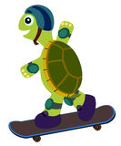 Skateboard turtle Royalty Free Stock Photo