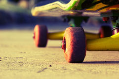 Skateboard wheels close-up royalty free stock photo