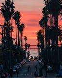 Skateboarders på solnedgången i Los Angeles royaltyfri bild