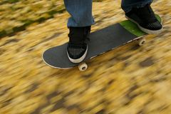 Skateboarding in fall. A skateboarder cruises through fallen yellow leaves Royalty Free Stock Image
