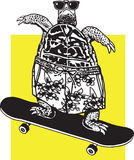 Skateboarding Turtle Stock Photos