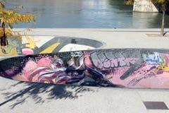 Skatepark à Lyon Photo libre de droits