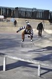 Skater in the park Royalty Free Stock Image