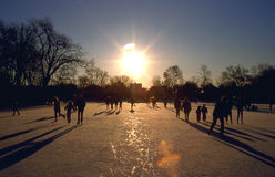 Skaters. Silhouette of Skaters at Sunset Royalty Free Stock Photo