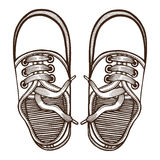 Skaters Shoes. Top View. Stock Photo