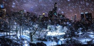 Skating in New York at night during snow royalty free stock photo