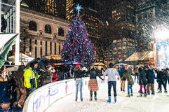 Skating by the Tree Royalty Free Stock Photography