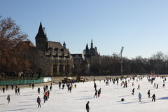 Skating in varosligeti mujegpalya,Budapest,Hungary,2016 Stock Photography