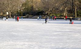 Skating on Village Lake Stock Images