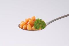 Sked av av bönor i tomat Arkivfoto