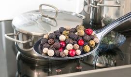 Sked av kryddig färgrik pepparkornnärbild Pipblåsarenigrum royaltyfri fotografi