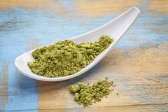 Sked av pulver för grönt te för matcha Royaltyfri Foto