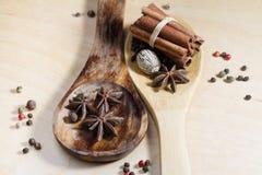sked och kryddor Arkivbild