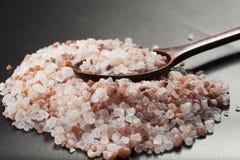 Sked på salt Arkivfoto