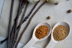 Skedar med kryddor Royaltyfria Foton